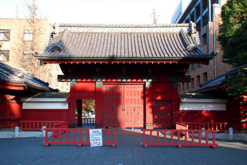 toudaiakamon